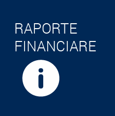 RaporteFinanciare